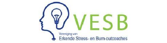 VESB logo